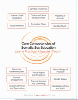 Core Competencies SSE